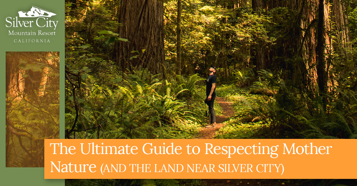 The_Ultimate_Guide_To_Respecting_Mother_Nature.jpg